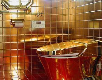 黄金のトイレ,日本,ドクター中松