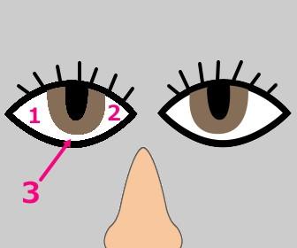 目が怖い三白眼