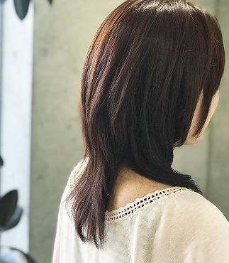 森口博子の髪型の後ろ画像