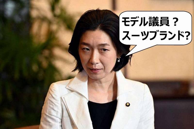 白井亜希子役のモデル議員は誰?スーツブランドと値段も調査