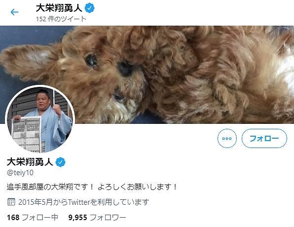大栄翔が飼っている犬画像