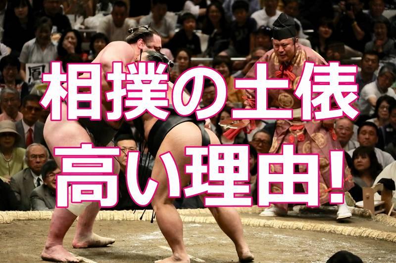 相撲の土俵が高い理由!高さの決まりやケガ多発の原因を親方達が解説