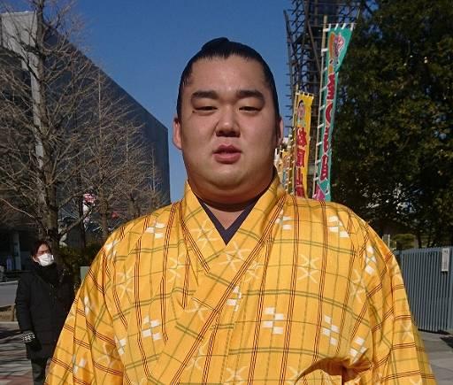 湘南乃海の経歴・プロフィール