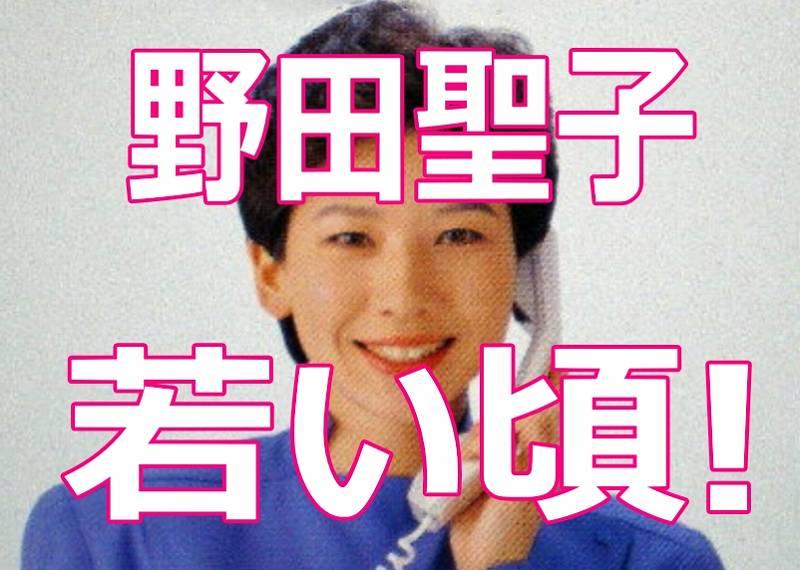 野田聖子の若い頃がかわいい!痩せてたショートの髪型画像がアイドル級